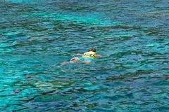 Snorkla på Koh Rok, Andaman hav, THAILAND Royaltyfri Bild