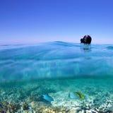 Snorkla på korallreven Arkivbild