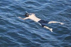 Snorkler Royalty Free Stock Image