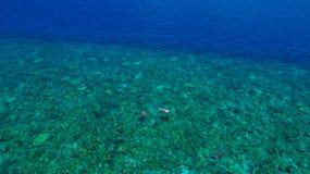 Snorkling海岛在马尔代夫 免版税库存图片