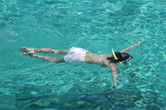 Snorkling Royalty Free Stock Images