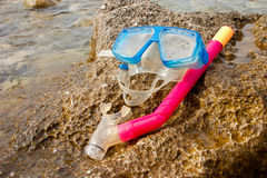 Snorkling - 2 Stock Image