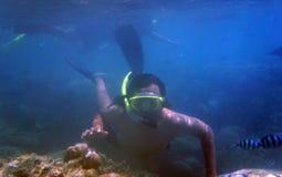 Snorkling Photographie stock