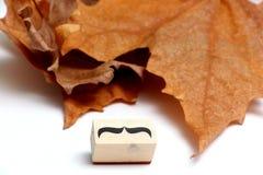 Snorren rubberzegel Het concept van de de gezondheidsvoorlichting van Movembermensen ` s Stock Fotografie