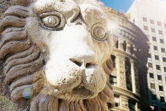 Snout lion statue on top of a building Royalty Free Stock Images
