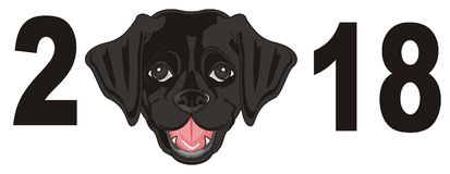 Snout of puppy with numbers. Black muzzle of labrador puppy with black numbers Royalty Free Stock Photography