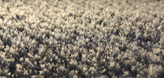 Snow. Texture in close up royalty free stock image