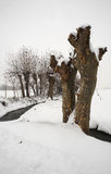 Snow. Ospitaletto (Bs),Franciacorta,Lombardy,Italy,the snow in countryside Royalty Free Stock Image