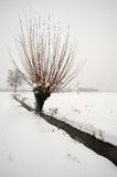 Snow. Ospitaletto (Bs),Franciacorta,Lombardy,Italy,the snow in countryside Royalty Free Stock Photos