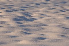 Snow. Fresh winter snow on the ground Royalty Free Stock Images