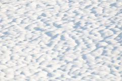 Snow. Surface covered with melting snow royalty free stock photo