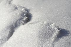 Snow. Surface with icicle ridge Royalty Free Stock Image