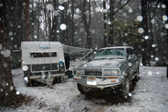 Snow. Royalty Free Stock Photo