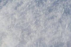 snow Arkivfoton