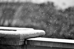 snow Arkivbild