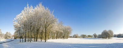 Snow. A snow covered rural landscape in the countryside Stock Photo