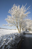 Snow. A snow covered rural landscape in the countryside Royalty Free Stock Images