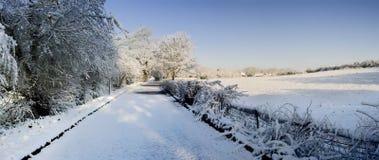 snow arkivbilder