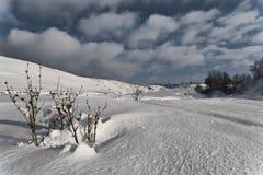 Snow 5. Glitter sunshine in the valley. High density range image Stock Images
