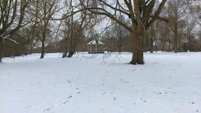 snow Royaltyfri Fotografi