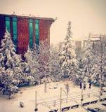 snow Arkivfoto