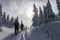 Snow adventure. Picture of two men snowshoeing on a trail in an evergreen forest covered with snow. They are walking towards the sun Stock Photo