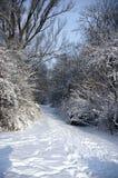 Snow alley Stock Photo