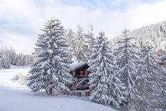 Snow in the Alps Stock Photography