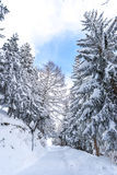 Snow in the Alps Stock Image