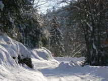 Snow in the Alps (Vercors), France Royalty Free Stock Photos