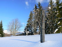 Snow in the Alps (Vercors), France Stock Images
