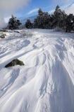 Snow&wind fotografia stock