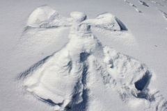 Free Snow Angel Royalty Free Stock Photography - 23208637