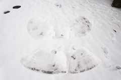 Snow angel on floor Stock Photography