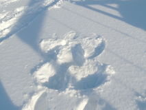 Snow Angel made by little Girl Stock Image