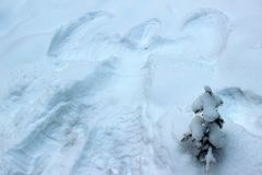 A snow angel next to a fur-tree. A snow angel next to a small fir tree, powdered with snow Royalty Free Stock Photography