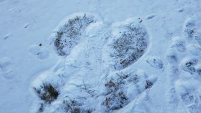 Snow angel. Made by toddler Stock Photo