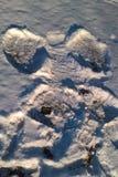 Snow Angels Stock Image