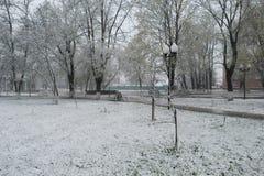 Snow in April Stock Image