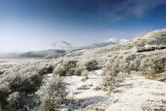 Snow area. Drive the steppe of snow overlay pretty much beauty Royalty Free Stock Photos