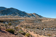 Snow in Arizona desert  Royalty Free Stock Photos