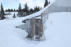 Snow around the chicken coop Stock Image