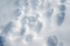 Snow Art: Close up of natural snow formations. Undisturbed by people and wildlife Royalty Free Stock Photography