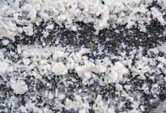 Snow on asphalt Royalty Free Stock Photos