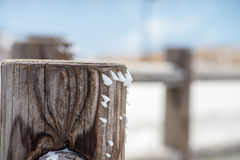 Snow attached to the wood fence Stock Images