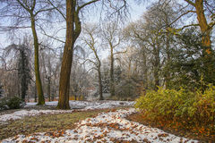 Snow in autumn park Royalty Free Stock Images