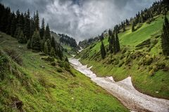Snow from the avalanches in the gorge. View of a mountain river in the gorge with snow from the avalanches stock photos