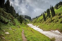Snow from the avalanches in the gorge. View of a mountain river in the gorge with snow from the avalanches stock image