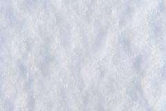 Snow backgroun in winter Stock Image