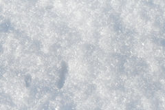 Snow Background. A white snow background closeup Royalty Free Stock Photo